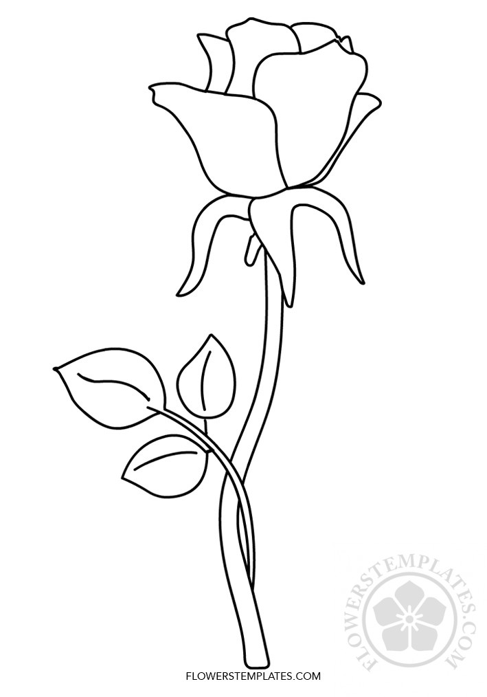 Rose flower coloring page printable | Flowers Templates
